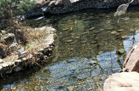 溪楓源山莊