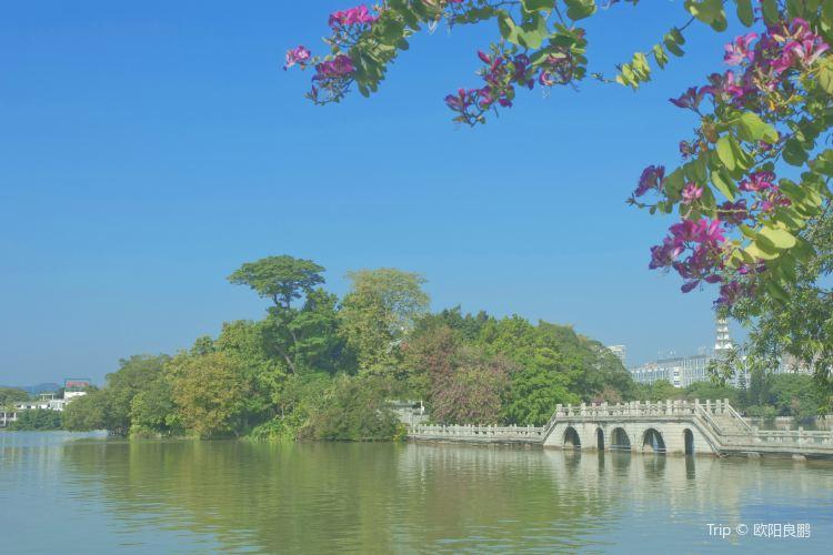 Hundred Flower Pond (Bai Hua Zhou)3