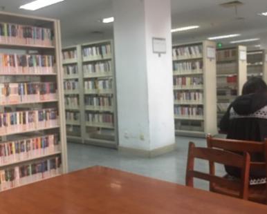 Wuxi Library (shangmadunfenguan)