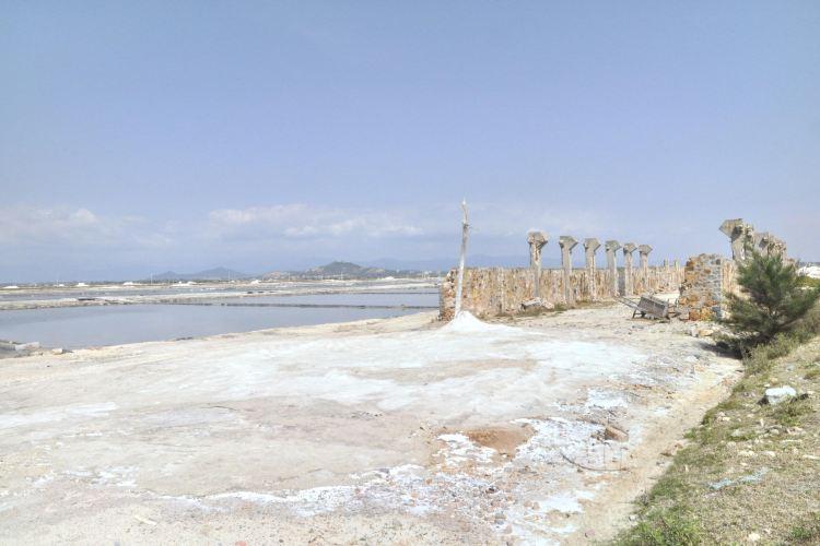 鶯歌海鹽場