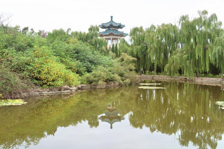 淄博聊齋城
