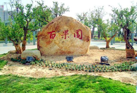 徐州百果園