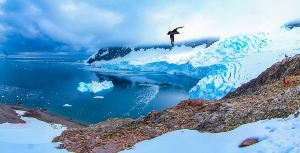 XII Region of Magallanes and Chilean Antarctica,Recommendations
