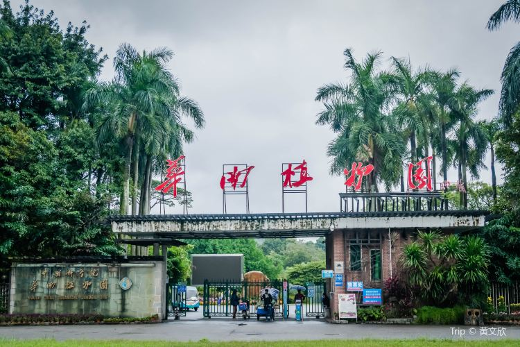 Chinese Academy of Sciences Huanan Botanical Garden2