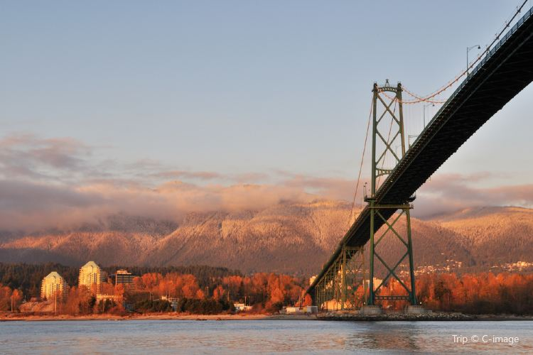 Lions Gate Bridge2