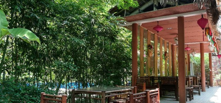 老木棉花鄉越式餐廳1