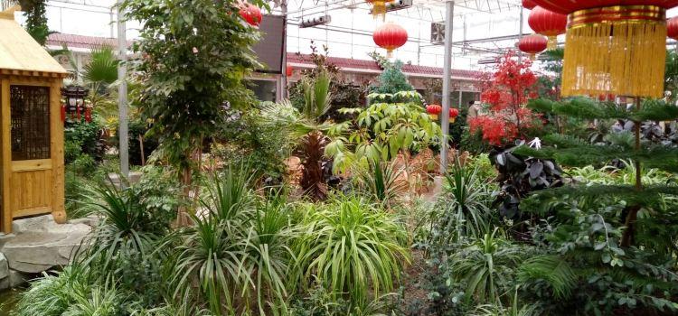 白雲生態園3