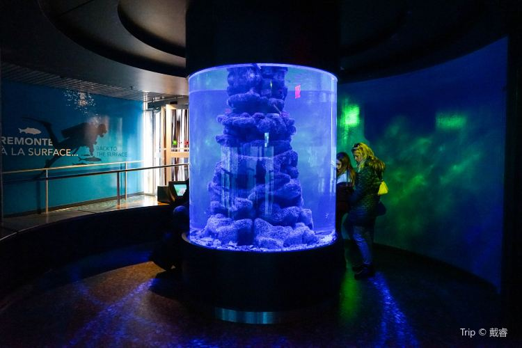 蒙特利爾自然生態博物館3