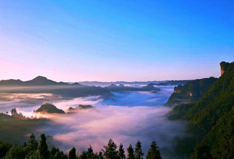 Jiemuxi Valley Virgin Forests