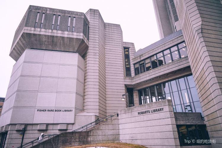 Robarts library1