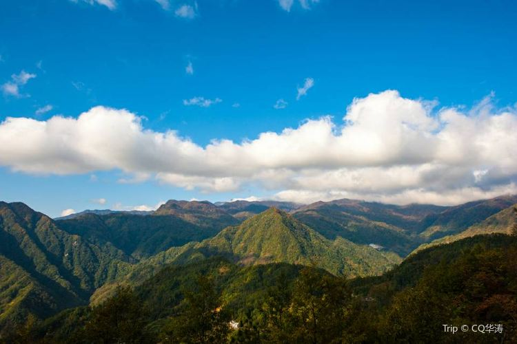 Micang Mountain National Forest Park2
