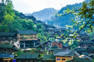 Zhaoqing,Recommendations