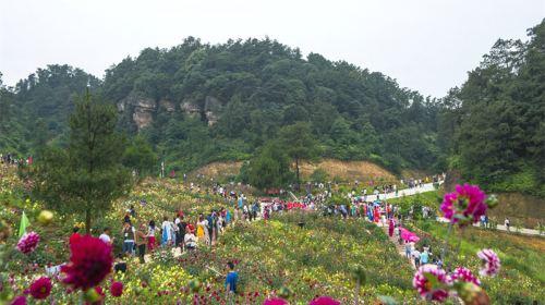 Wuhuashan