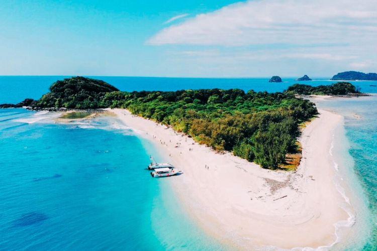 弗蘭克蘭德群島