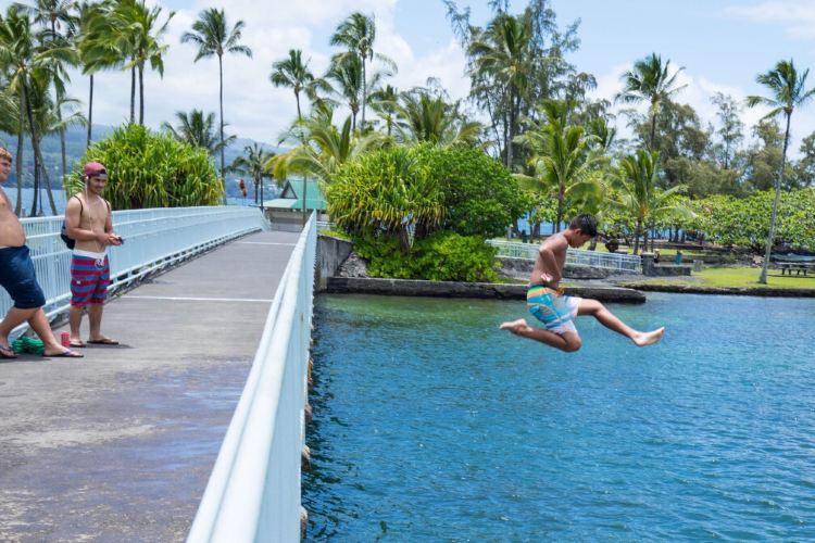 Coconut Island4
