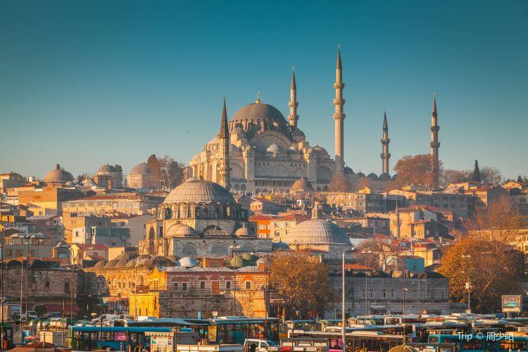 藍色清真寺3