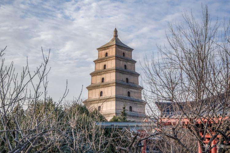 Giant Wild Goose Pagoda1