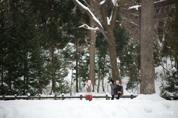 마루야마공원4
