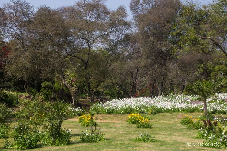 Buddha Jayanti Park Travel Guidebook Must Visit Attractions In New Delhi Buddha Jayanti Park Nearby Recommendation Trip Com