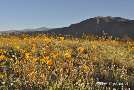 Spur Cross Ranch