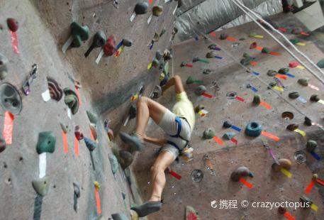 White Spider Climbing