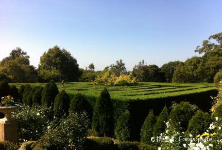 The Enchanted Adventure Garden