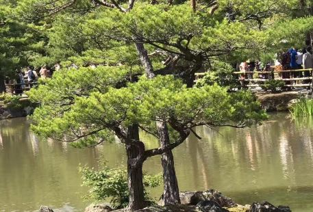 五華天雲嶺森林公園