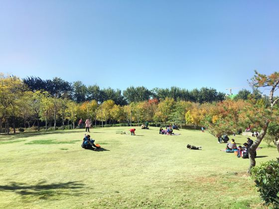 Jinan Forest Park