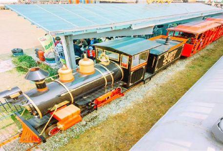 라이쓰 열차