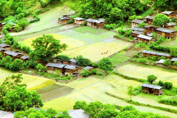 Qiunatongcun
