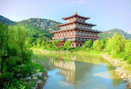 Zhongguofoxueyuanputuoshan College