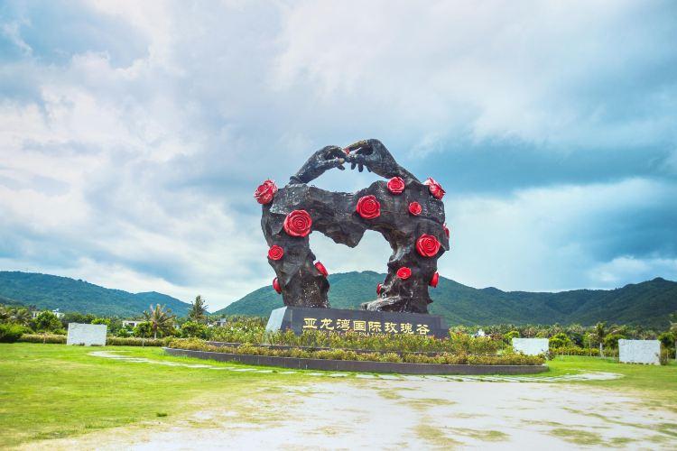 亞龍灣國際玫瑰谷1
