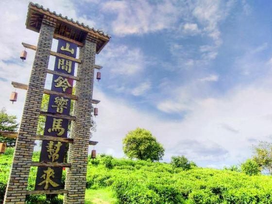 茶馬古道景點