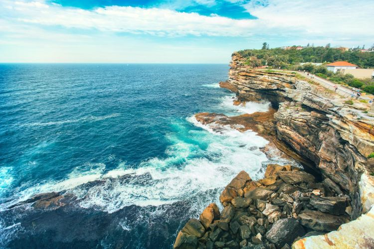 South Head and Watsons Bay Walk