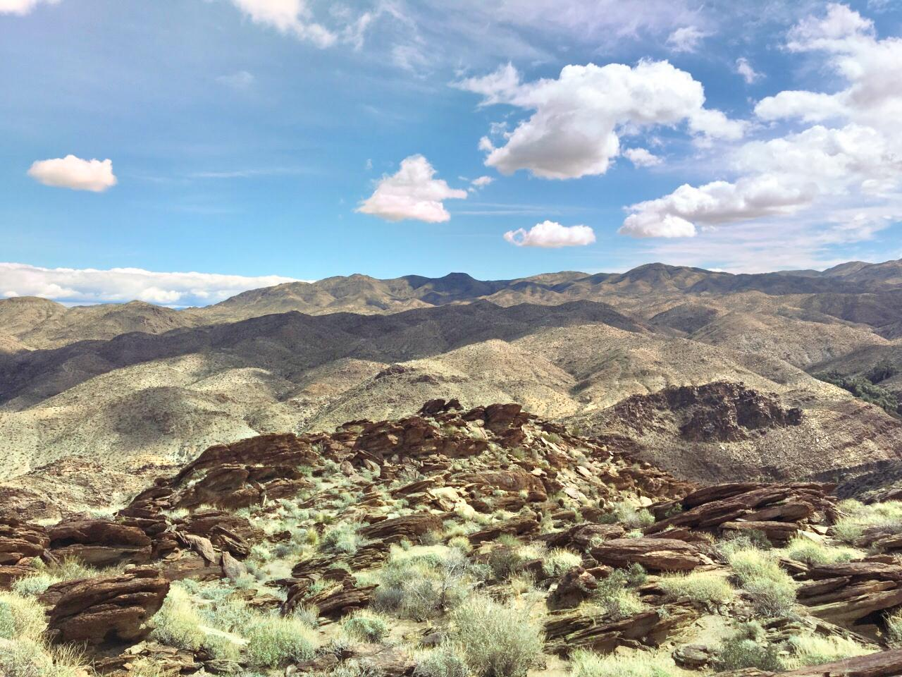 Indian Canyons Hiking Trails
