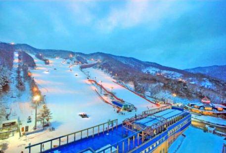 Yang Chi-Pine Ski Resort