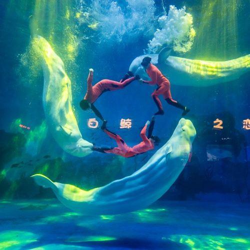 톈진 하이창지디하이양공위안(천진 해창극지해양공원)