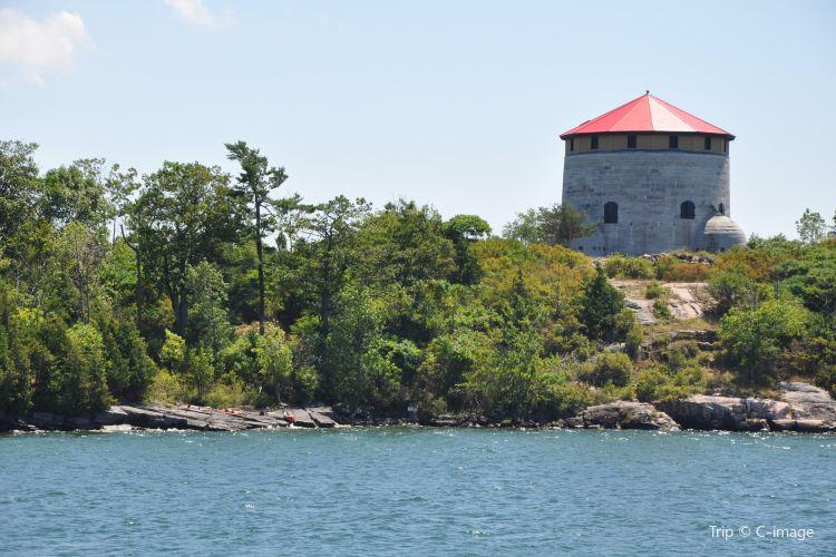 Fort Henry2
