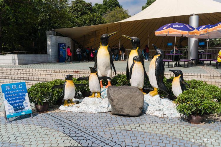 Guangzhou Ocean Aquarium1