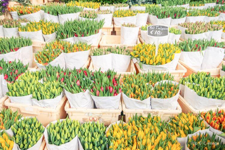 Singel Flower Market1