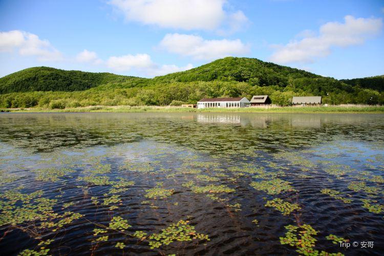 釧路濕原國立公園3
