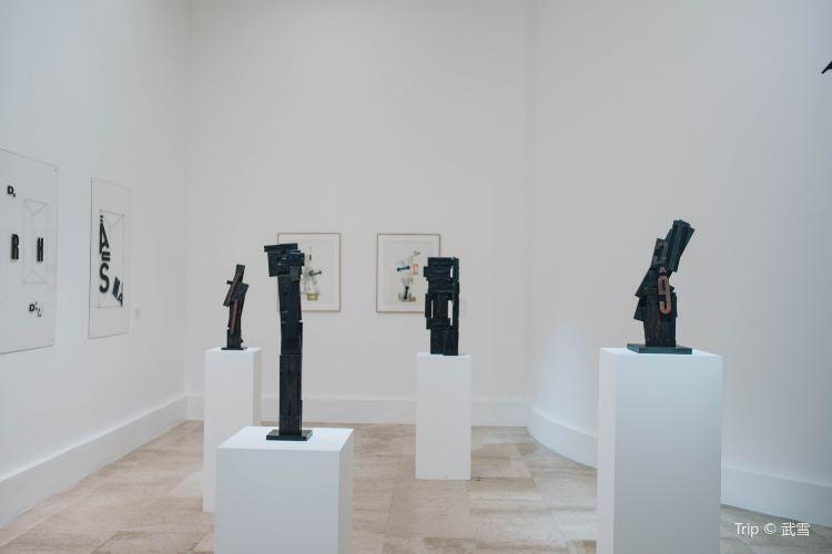 Musee d'Art Moderne de la Ville de Paris1