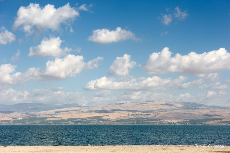 ティベリアス湖2