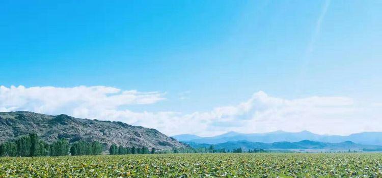 可可蘇裡禦景莊園2