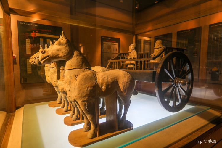 Han Dynasty Terracotta Warriors Museum2