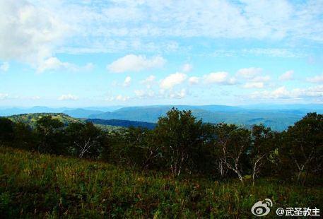 黑龍江鳳凰山國家級自然保護區