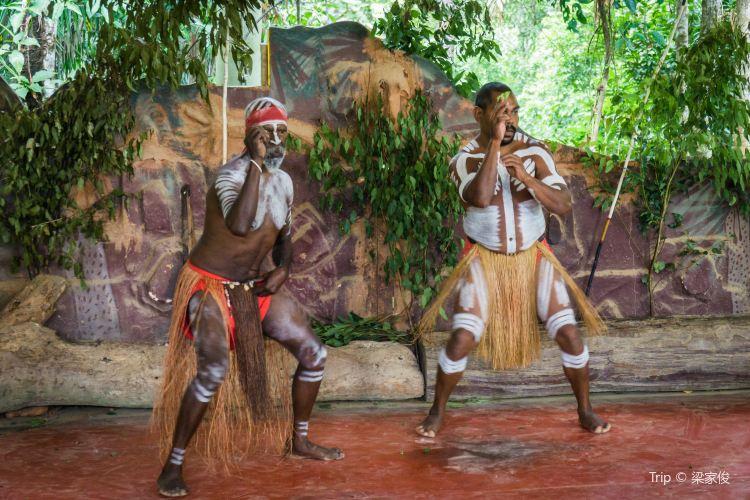Tjapukai Aboriginal Cultural Park2