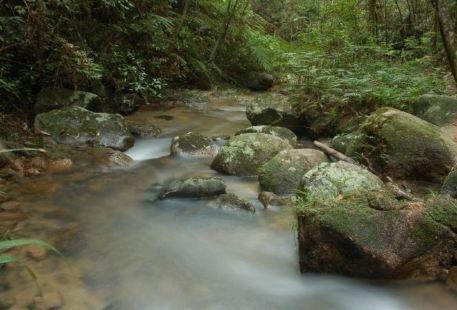 Heishiding Nature Reserve