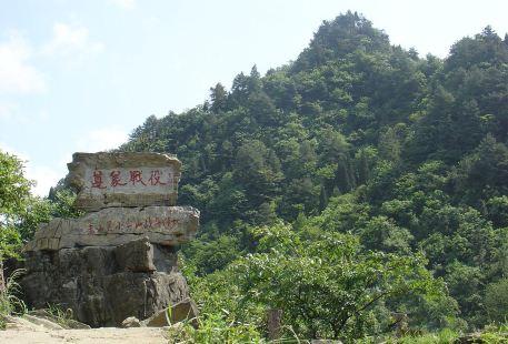 Longjiangsong Sceneic Area