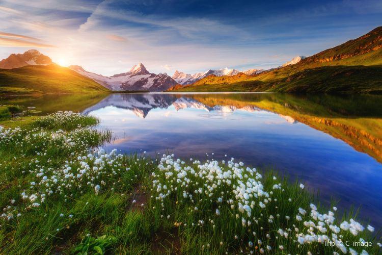 Grindelwald1